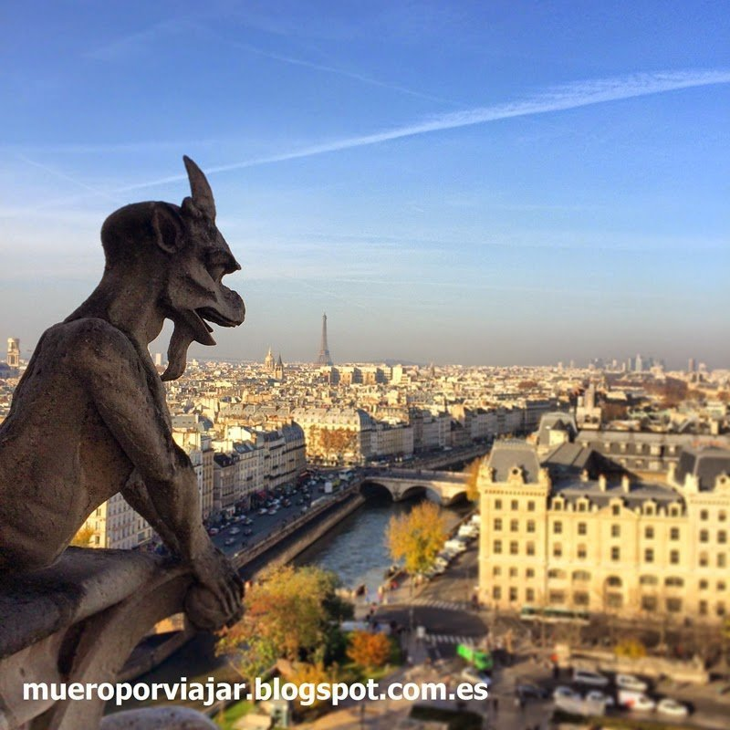 Gárgola y vistas de París desde la Cathédrale Notre-Dame