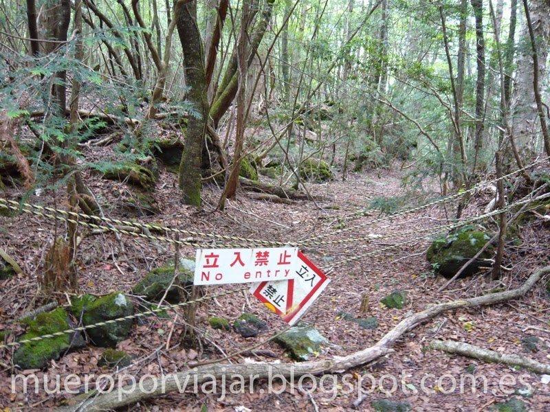 Carteles que prohíben la entrada a zonas sin señalizar - Aokigahara