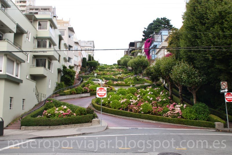 Famosa calle serpenteante Lobard Street en San Francisco