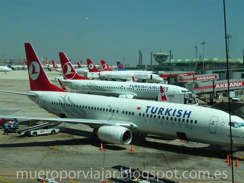 Flota de aviones de Turkish Airlines dispuesta para llevarnos a nuestros destinos