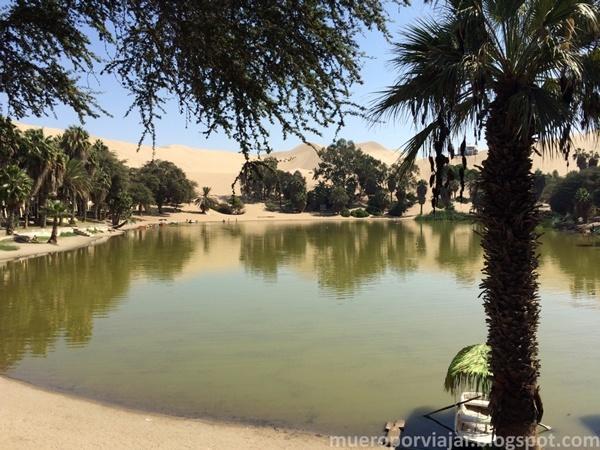 En la laguna del Oasis de Huacachina se puede alquilar unas barcas para paso o bañarse libremente