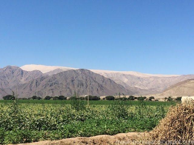 El cerro blanco es la duna más alta del mundo, sobresale por encima de las montañas