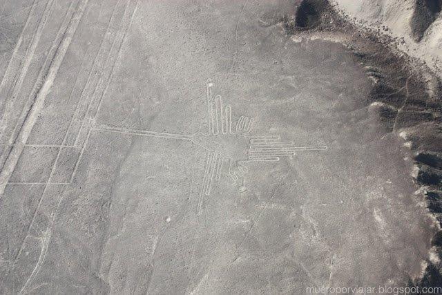 El Colibrí, una de las figuras que mejor se pueden apreciar, en las lineas de Nasca, Perú