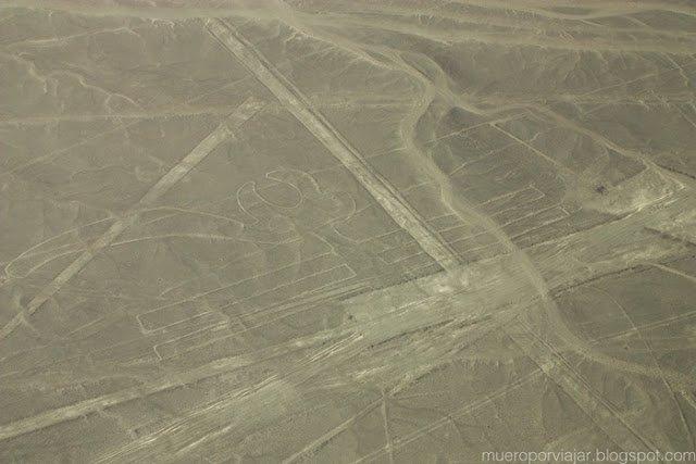 El Loro, en las lineas de Nasca, Perú