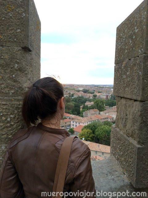 Las vistas desde la ciudad amurallada de Carcassonne son muy bonitas