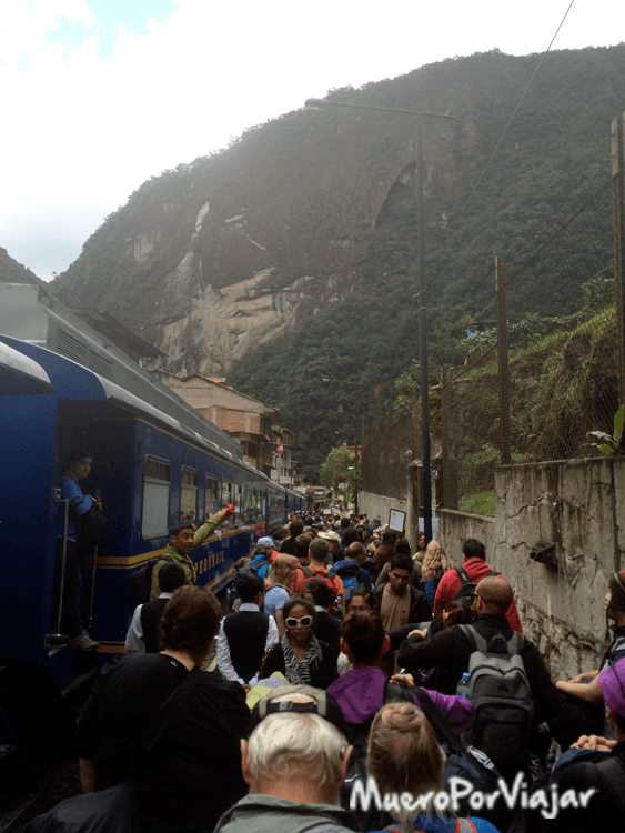 La llegada a Machu Pichu es un caos organizado