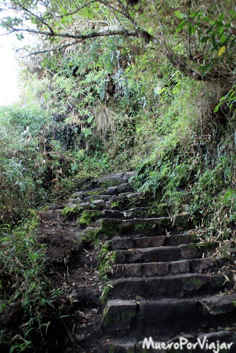 Las vistas y el camino de subida hacia le Waynapicchu es muy bonito y pintoresco