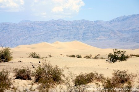 Las Sand Dunes en Death Valley