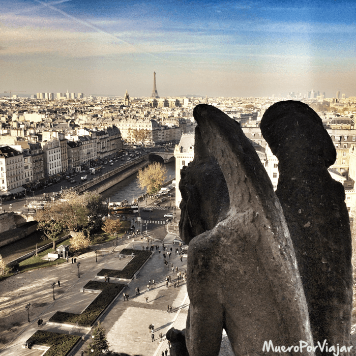 Vista de París en compañia una Gargola de Notre Dame