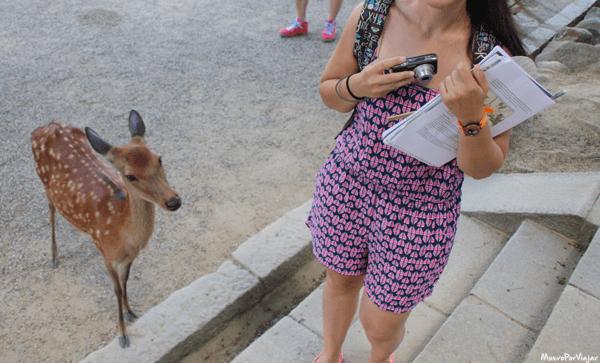 Un bambi muy mono que quería una foto conmigo :)