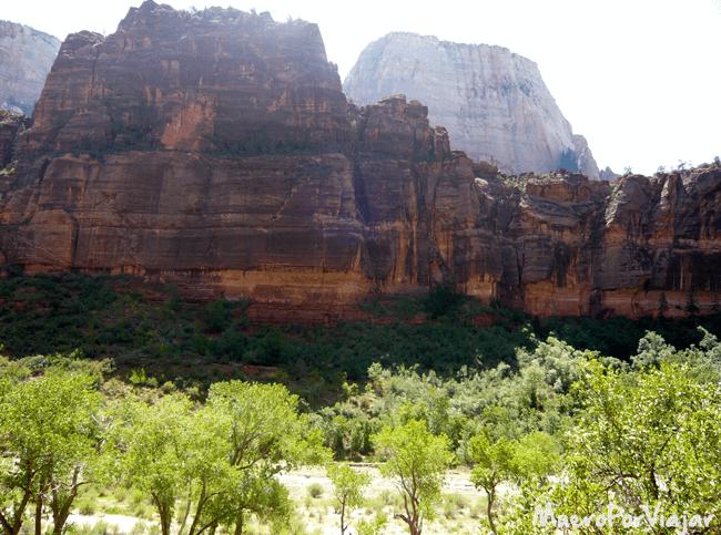 Las vistas del Zion National Park son impresionantes y hay mucha vegetación