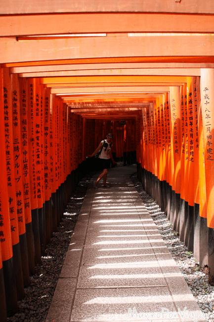 Recorriendo el famoso paseo de los Toris del Santuario Fushimi Inari-Taisha (famoso por la película Memorias de una Geisha)