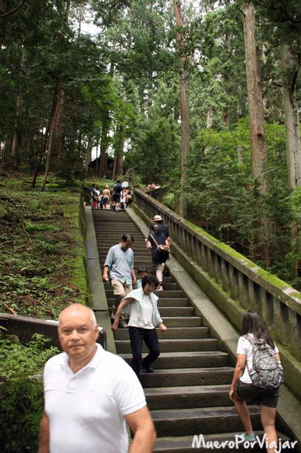 La naturaleza es el tema principal en los tempos de Japón