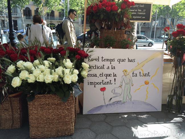 Sant Jordi es un día muy colorido por las rosas
