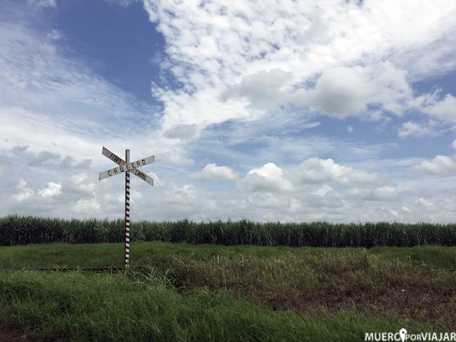 Campos verdes en Cuba