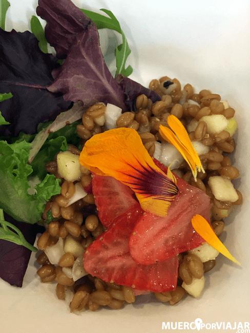 Ensaladica primaveral de grano entero de trigo Aragón 03 con crudités y aliño de AOVE