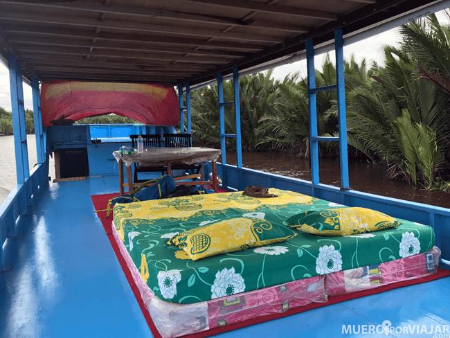 Cuando viajes en Klotok, la parte superior del barco se convierte en tu habitación