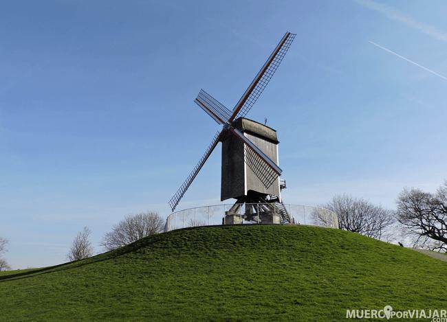 Molinos de Santa Ana de Brujas (Bélgica)