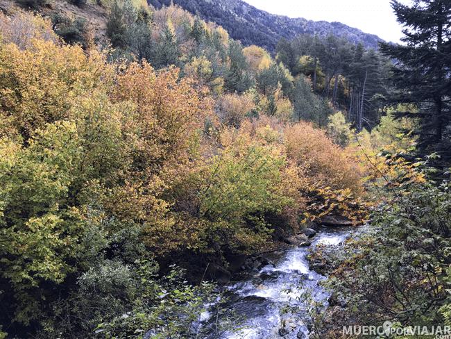 Durante el paseo por Aigüestortes puedes disfrutar de preciosos paisajes naturales
