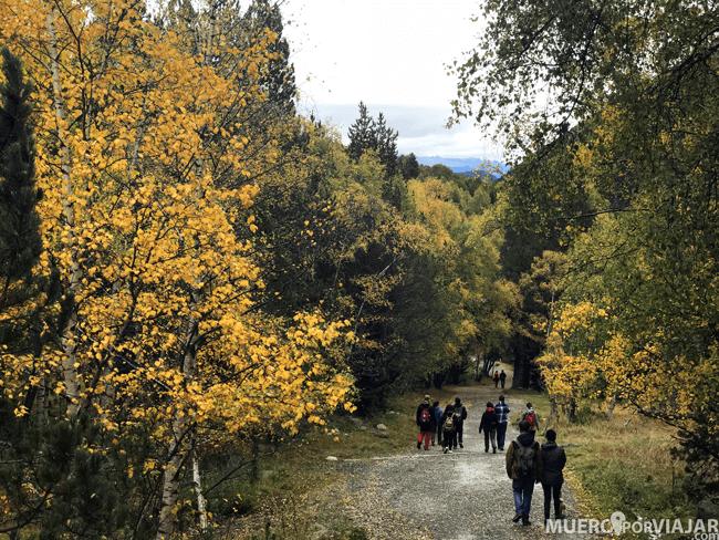 El equipo al completo disfrutando de la naturaleza en el Parc D'Aigüestortes