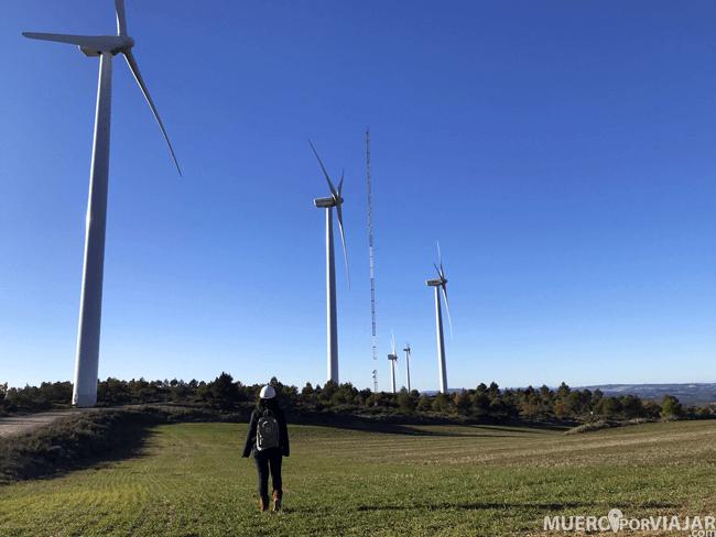 Pudimos pasear entre los gigantescos molinos de viento en el Parc Eòlic de Rubió