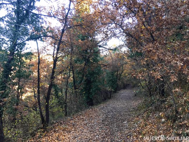 Caminos de la Alta Anoia