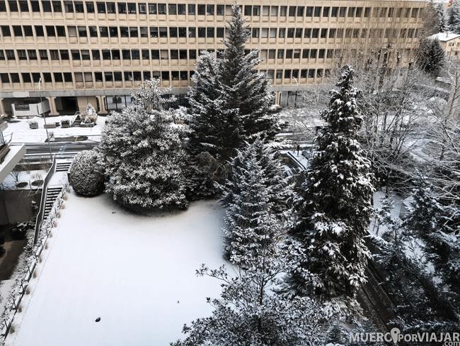Vistas desde nuestra habitación Crowne Plaza Geneva