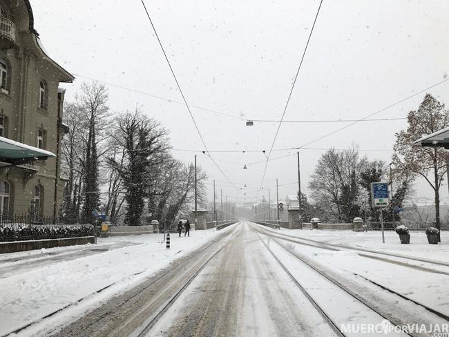 Amanecimos con una preciosa nevada en Berna