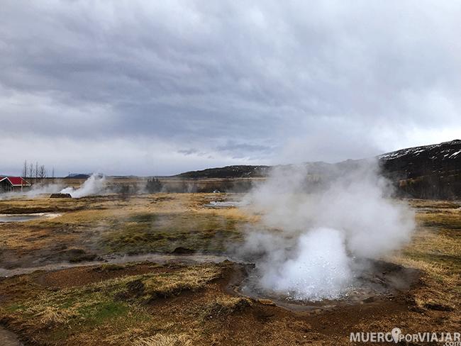 En el valle de Haukaladu hay muchos mini geyser, toda la zona está llena de estos pequeños fenómenos