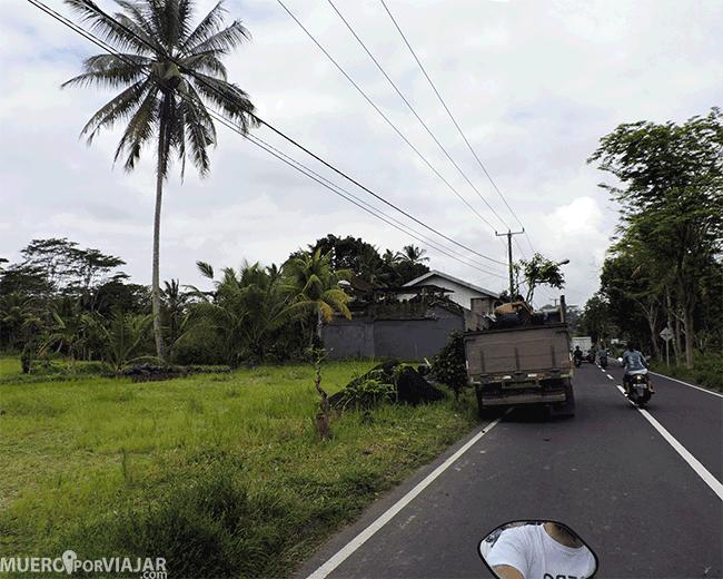 Conduciendo por los alrededores de Ubud