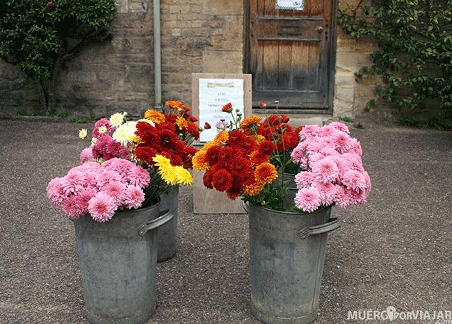 Venta de flores en Los Cotswolds