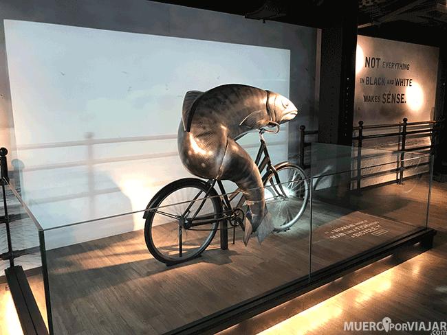 Una de las exposiciones del Museo Guinness de Dublín