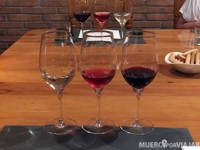 Cata de vino en el Celler de Alella