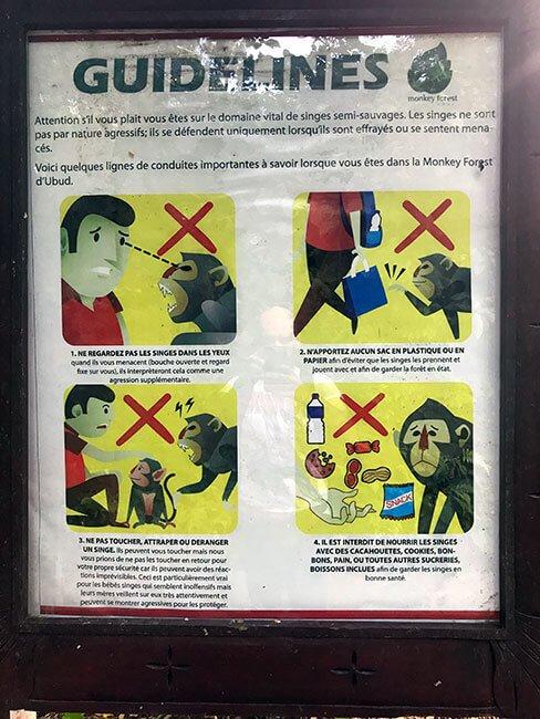 Indicaciones de comportamiento en el Monkey Forest de Ubud, recomendamos seguirlas