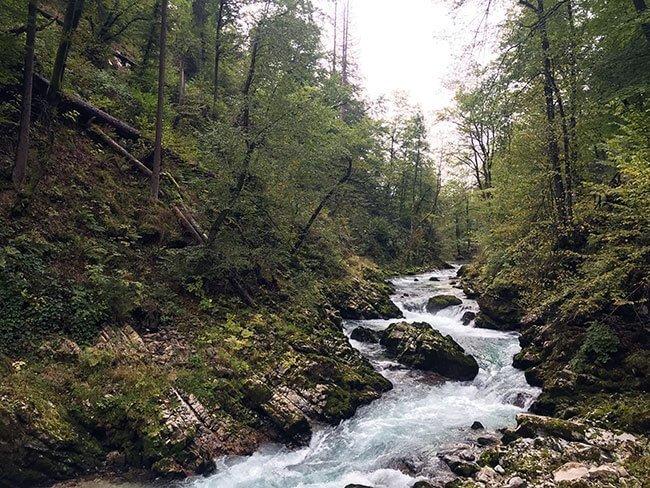 La noche anterior había llovido así que el río Radovna tenia fuerza en las Gargantas de Vintgar - Eslovenia