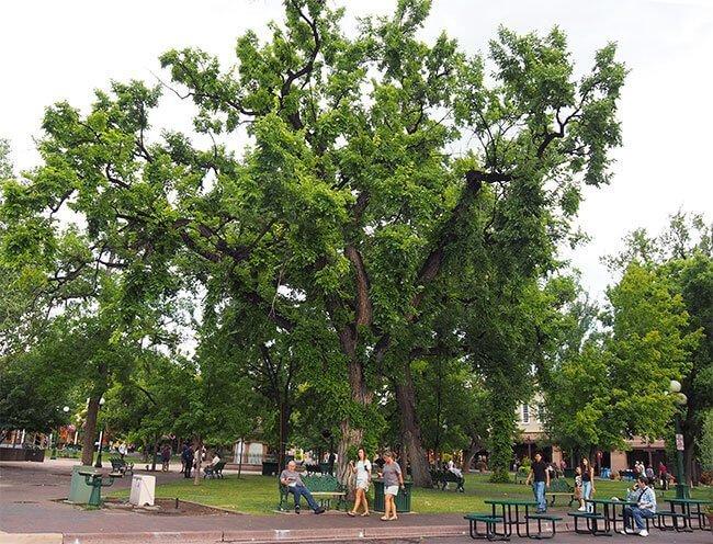 La Plaza de Santa fe en Nuevo Mexico