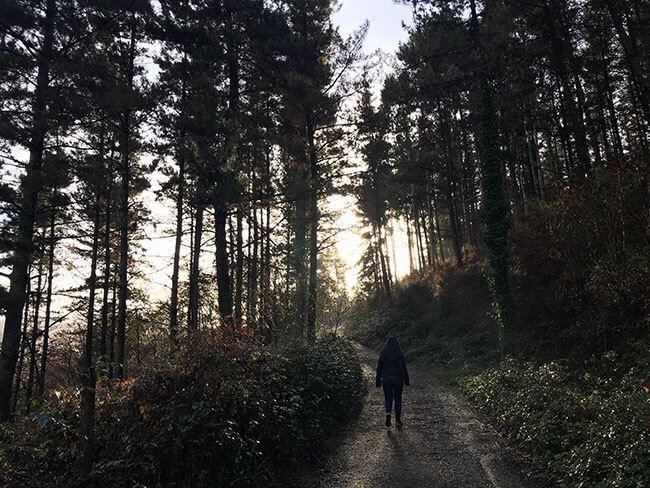 Camino del Bosque Pintado de Oma