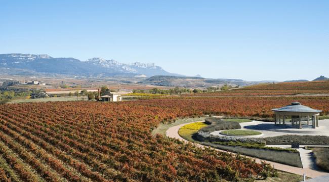 Vista del Museo Vivanco de la Cultura del Vino