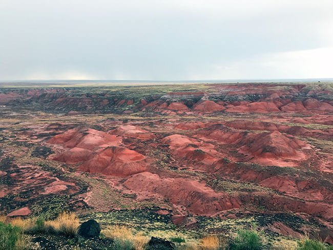 El parque natural del Petrified forest