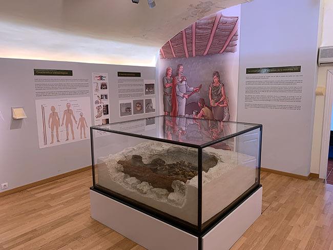 Museo Arqueológico de Galera
