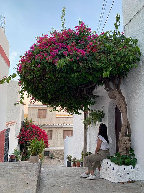 Una de las preciosas y coloridas calles de Salobreña en Granada