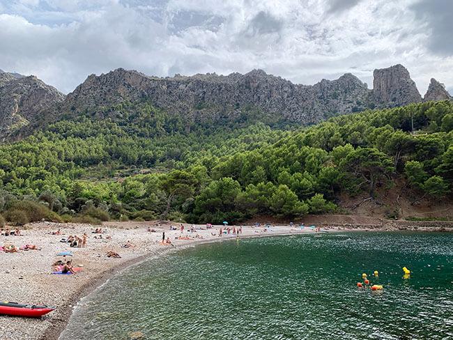 Cala Tuent en Mallorca donde se junta el mar con lo el bosque